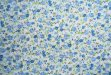 Blue Floral on White 01